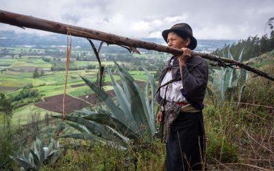Un pays riche en surprises – Equateur