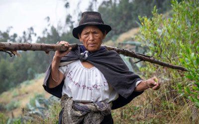 A surprising country – Ecuador