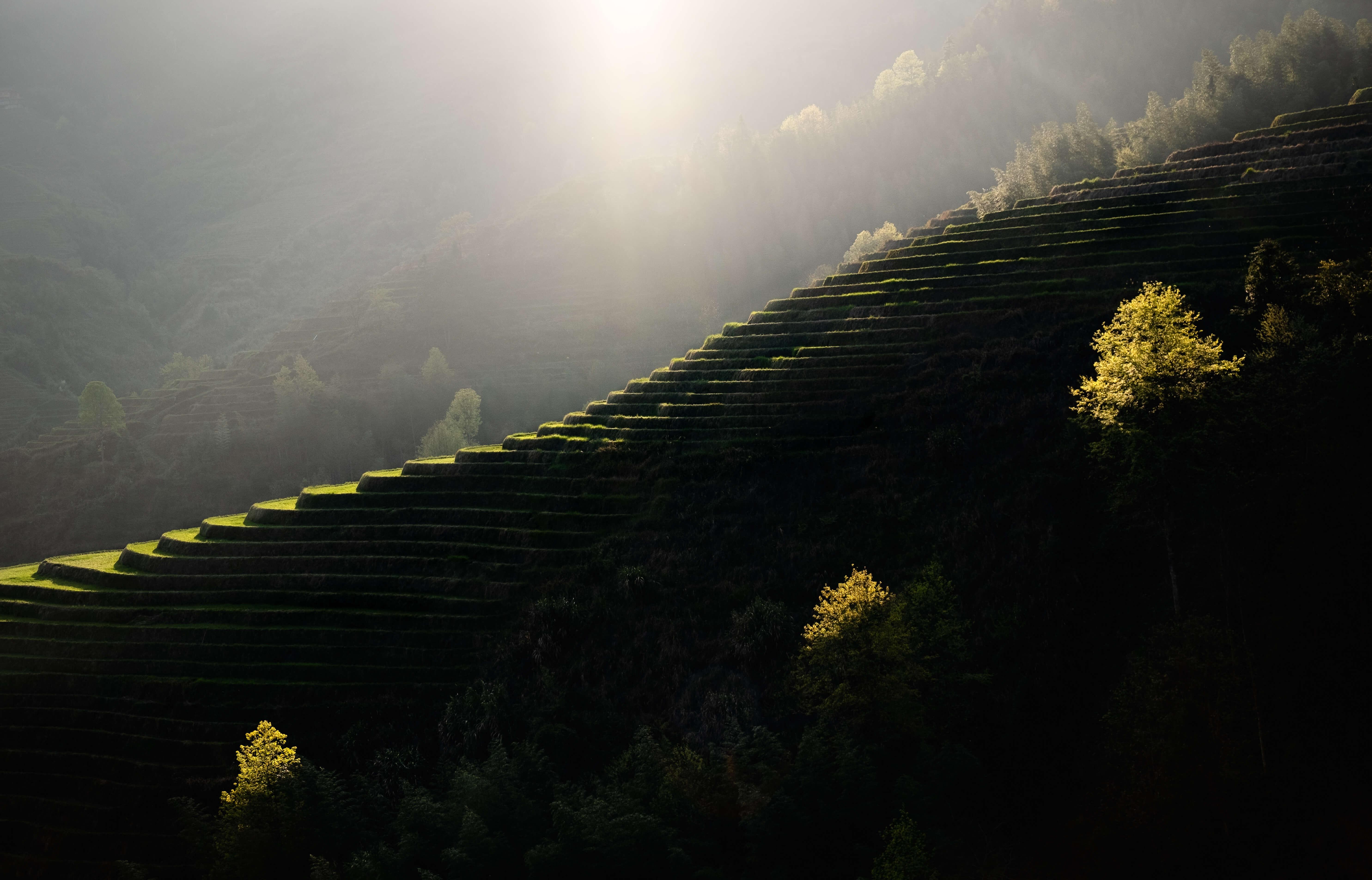 Longji rice terraces, longsheng, dazhai rice terraces, ping'an rice terraces, rice terraces in China, Guangxi, Travel in China, China travel, China trips, Photo Tour in China, China photo tours