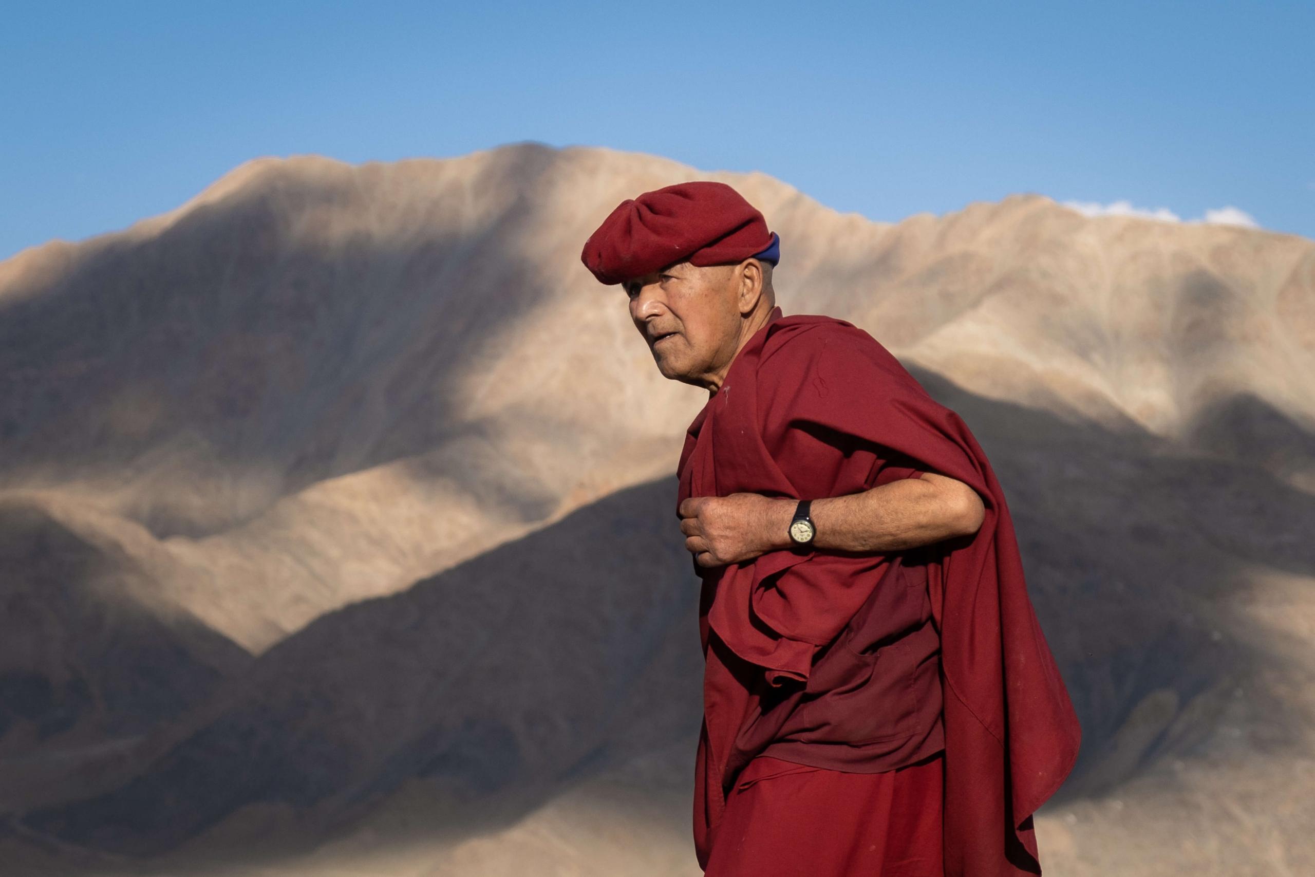 Monk in Hemis Fesival