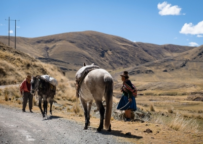 Andean life