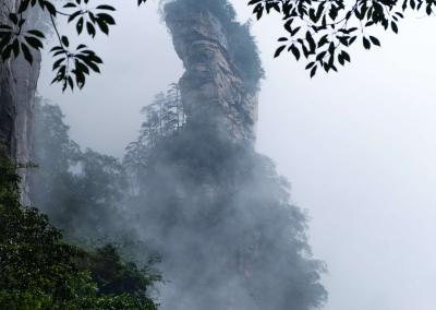 Zhangjiajie peak between trees